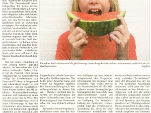 Artikel zum Zwiebelmarkt 2011