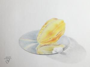 CDmitSternfrucht1998
